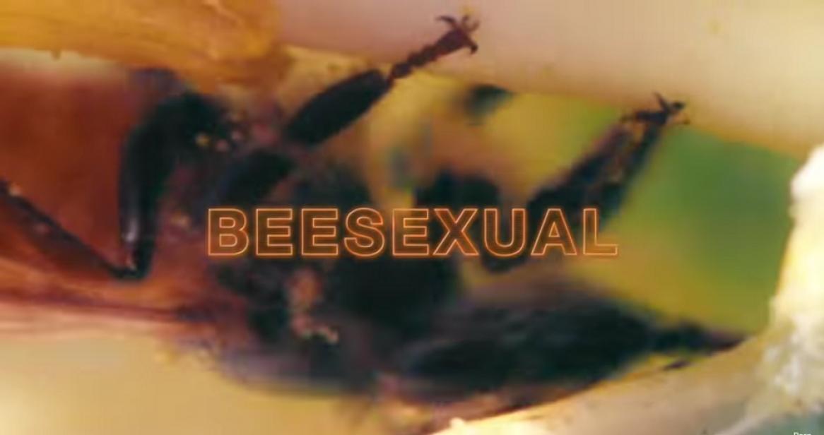 príťažlivé lesbické porno filmy